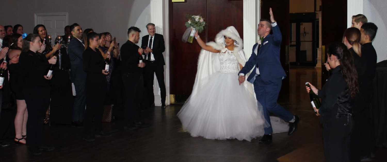 Bride and groom introduction